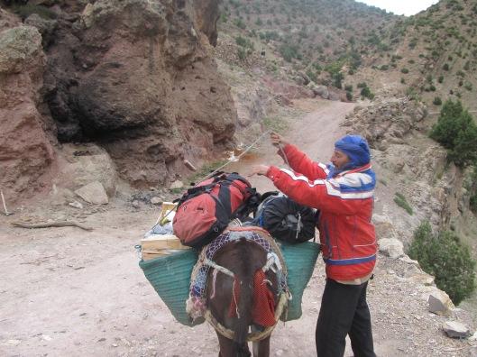 Ezels, het enige transportmiddel naar Taghia