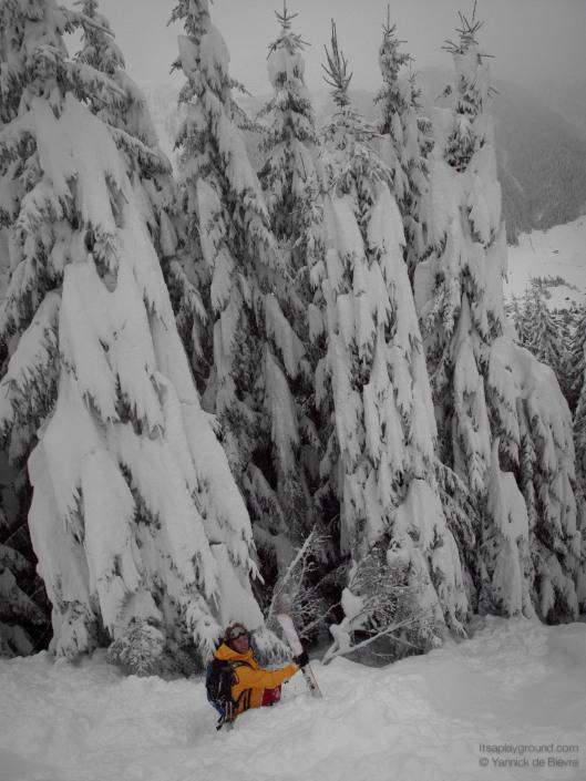 En bijna, bijna ook skiër ;-)