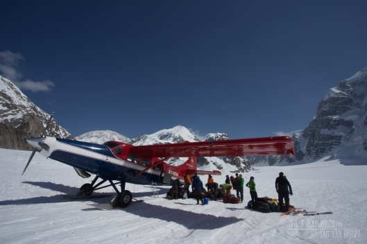 Our plane back to Talkeetna